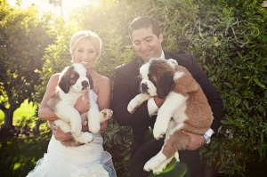 ashley-rose-dogs-with-couple
