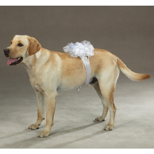 Dog Ring Bearer Pillow